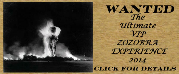 The Ultimate VIP Zozobra Experience