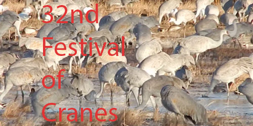 32nd Annual Festival of the Cranes