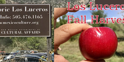 Los Luceros Fall Harvest