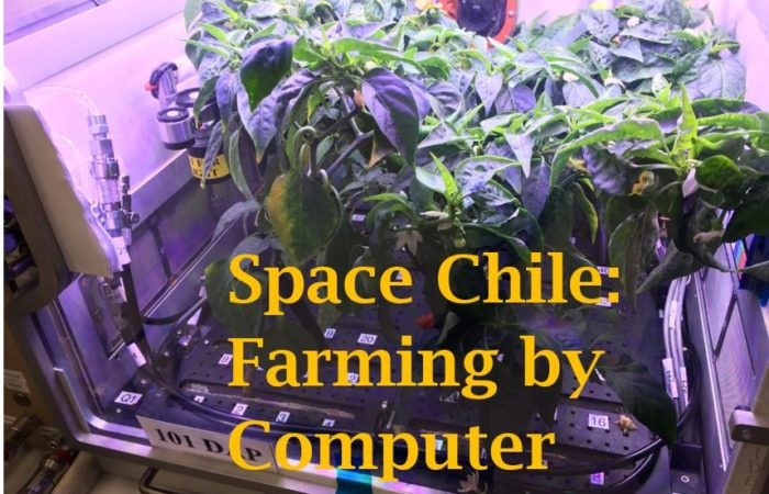 Space Chile: Farming By Computer