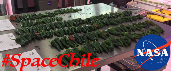 Growing New Mexico Chile in a Lab is Only a Small Percentage of What I Do…
